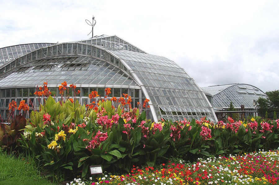 Things to do in Kyoto: Visit botanical gardens.