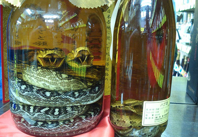 Okinawa Snake Wine