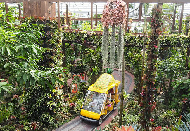 Things to do in Okinawa: Nago Pineapple Park