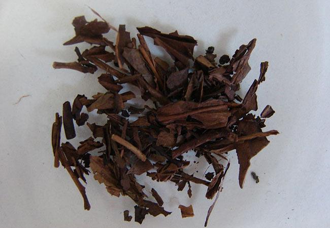 Hojicha Tea
