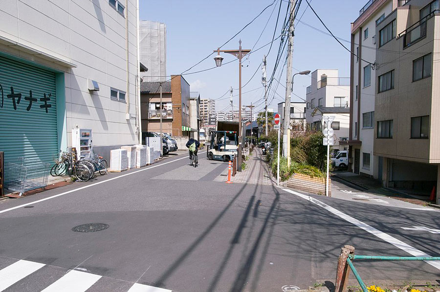 Tokyo Geisha Districts: Mukojima