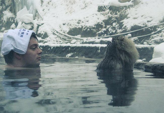Snow monkey in an onsen.