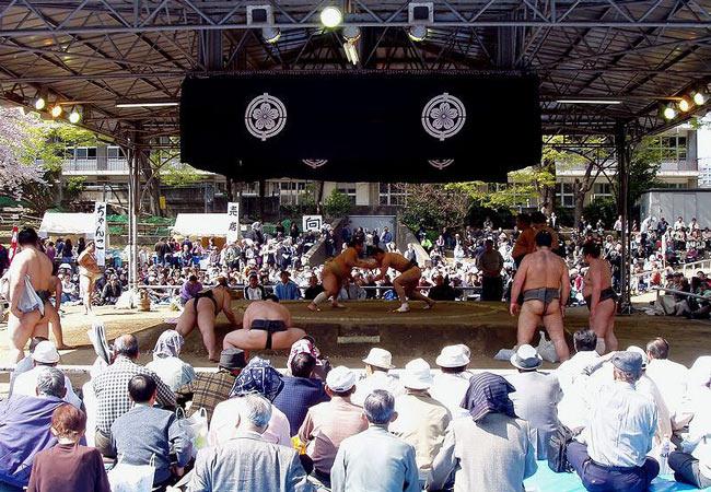 Sumo exhibition at the Yasukuni Shrine.
