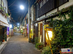 Tokyo geisha districts