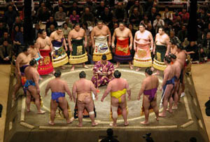 Sumo wrestling