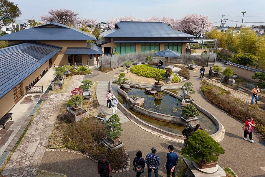 The Omiya Bonsai Village