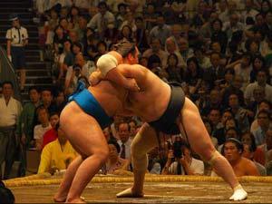Watch sumo in Tokyo.