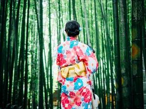 Kyoto geisha districts