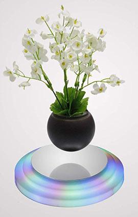 LED light floating bonsai pot.