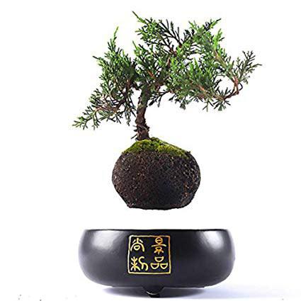 Japanese style Levitating Air Bonsai Pot