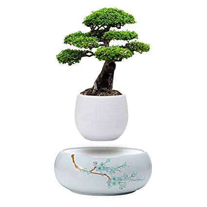 Levitating Plant Pot with Japanese Style Design for Flowers