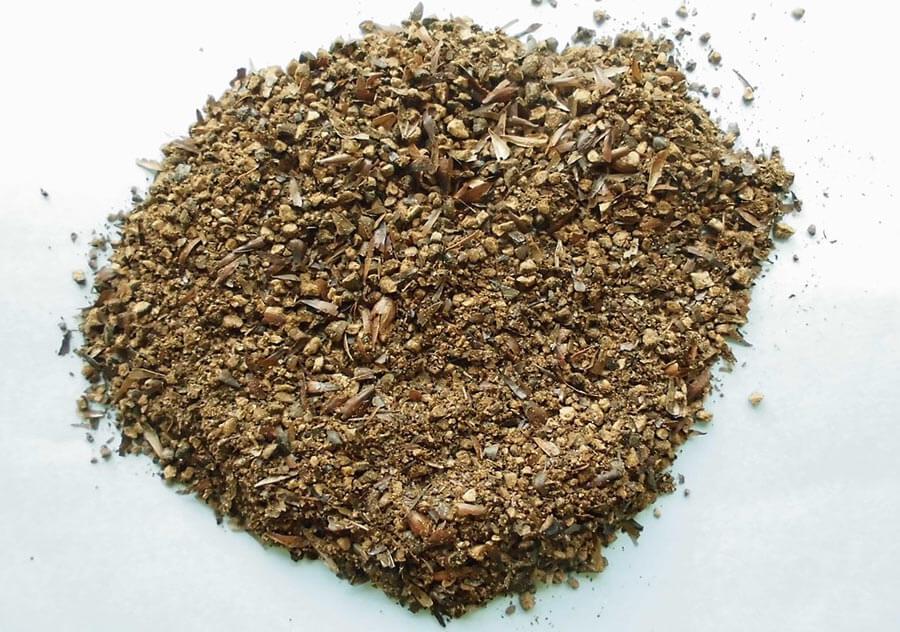 Barley used in Mugicha tea