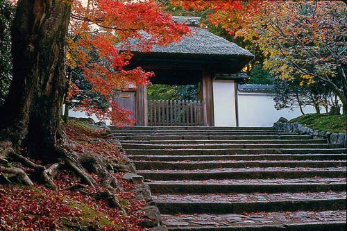 Temple lodgings in Kyoto