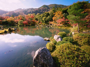 The Kyoto Botanical Gardens.